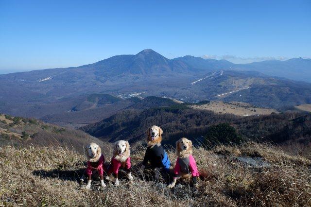 2018.12.2皆で霧ヶ峰高原ハイキング 205