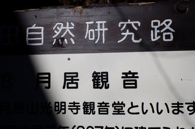 袋田の滝2019.1.2 084