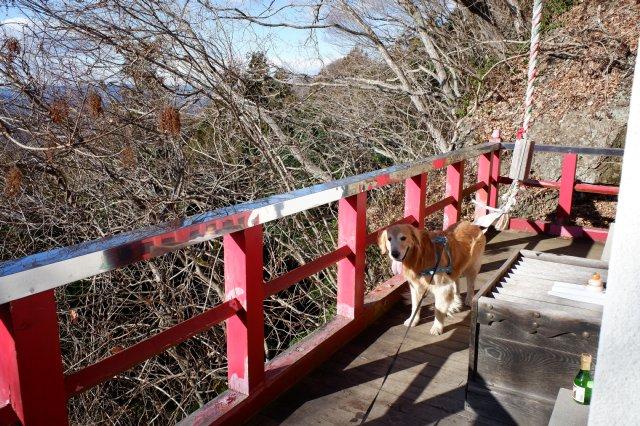 袋田の滝2019.1.2 085