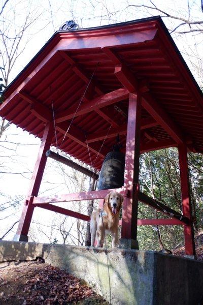 袋田の滝2019.1.2 088