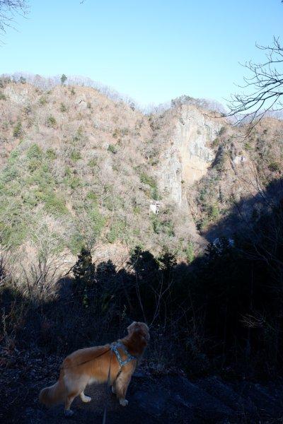 袋田の滝2019.1.2 096