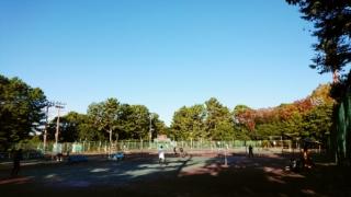 moblog_98ada3d4.jpg