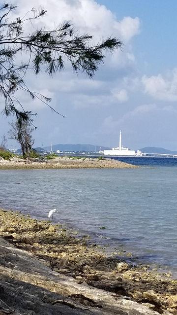 海辺20181114