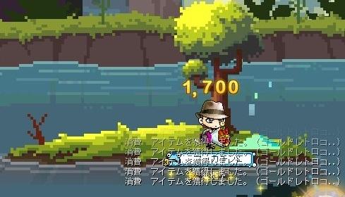 Maple_17809a.jpg