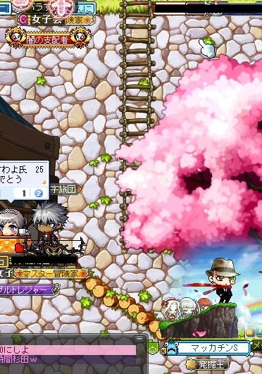 Maple_17963a.jpg