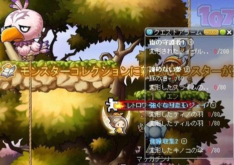 Maple_18015a.jpg