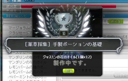 Maple_18032a.jpg