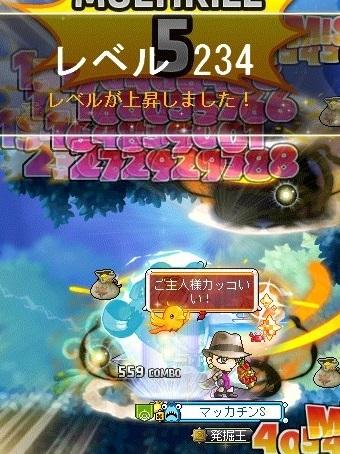 Maple_18042a.jpg