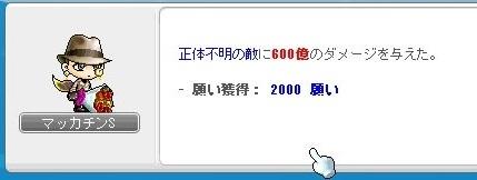 Maple_18044a.jpg