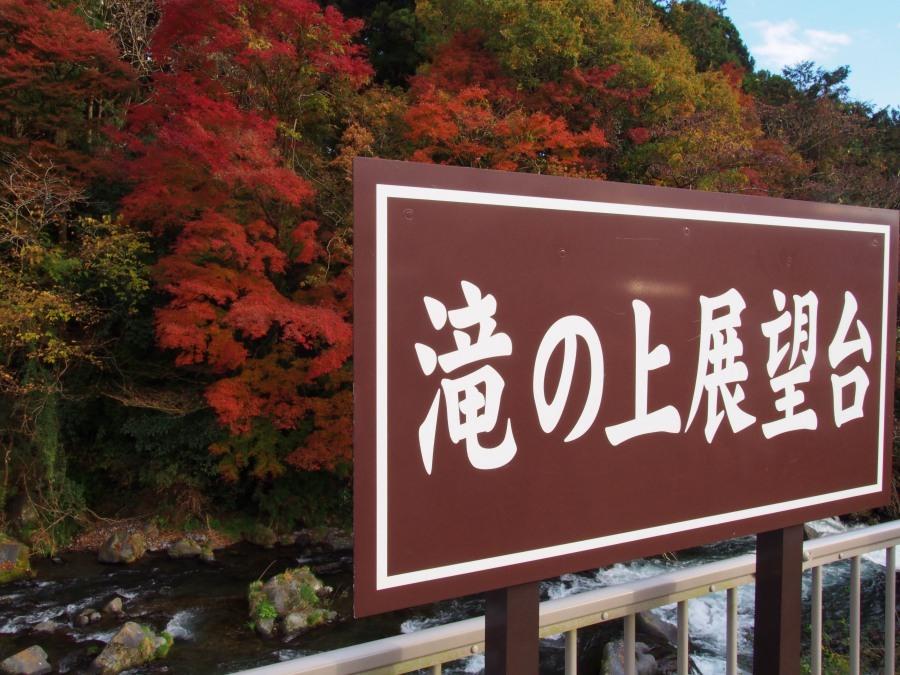 asagiri-20181123-10.jpg