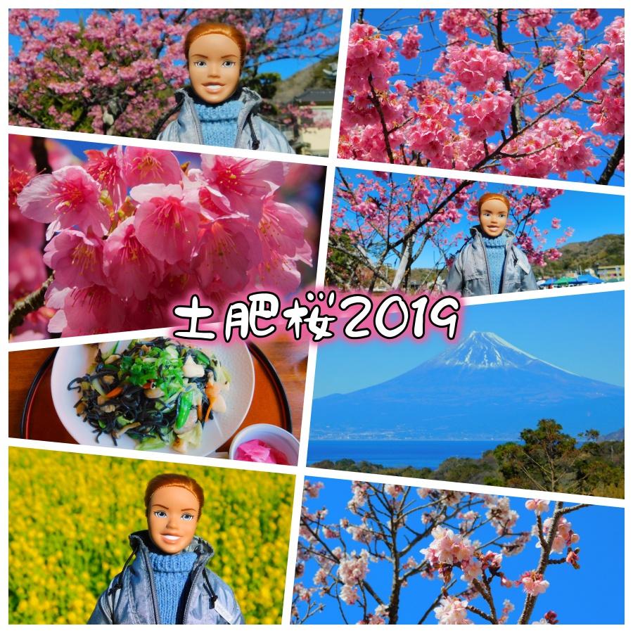 nini-20190127-01.jpg