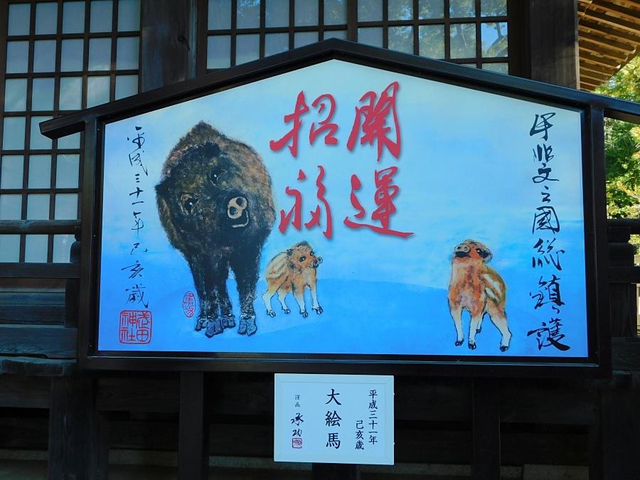 takeda-20190102-05.jpg