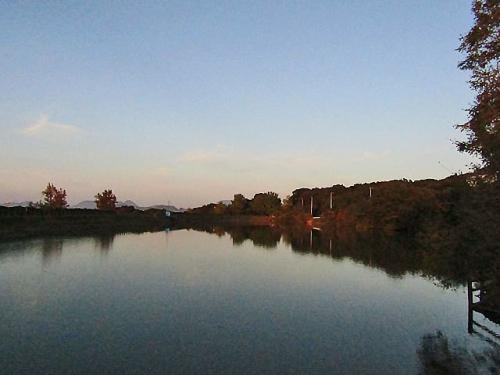 溜池の景色