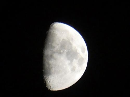 半月の綺麗な夜