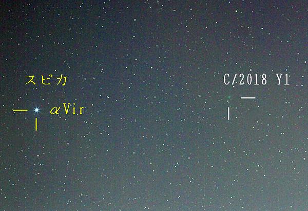 岩本彗星とスピカ 2019年2月2日