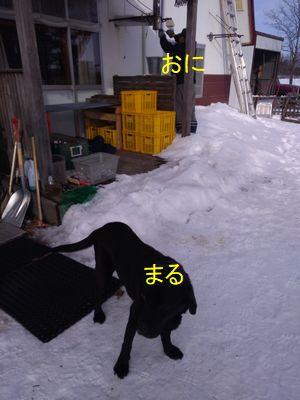 b-P_20190203_141845.jpg