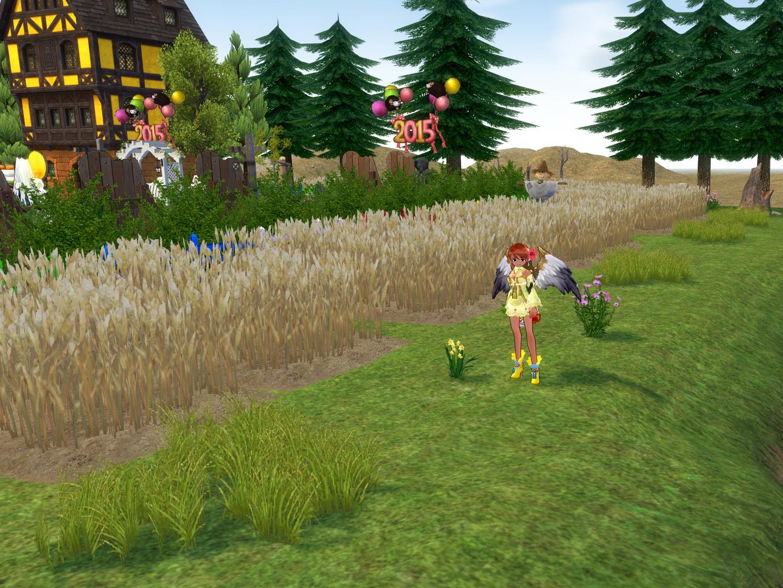 リノベ農場08