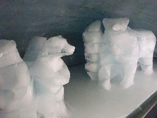 5日目ユングフラウヨッホ氷の宮殿 (3)