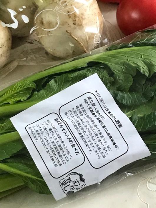 株と青菜 中