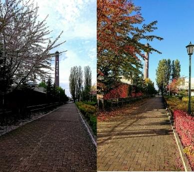 ビール園の春と秋2
