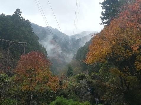 8 石鎚山ロープウェイ山麓より頂上を望む