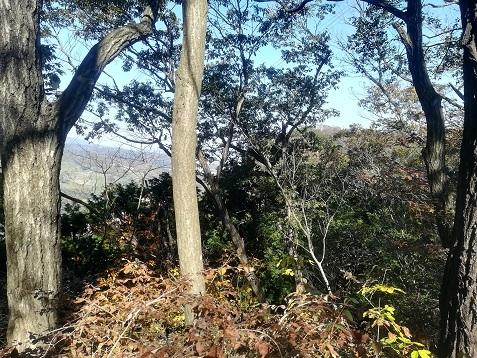 12 小枝の遠くに明神山のデッキ