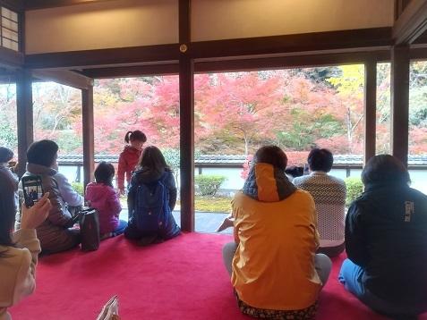 6 正暦寺 福寿院の庭