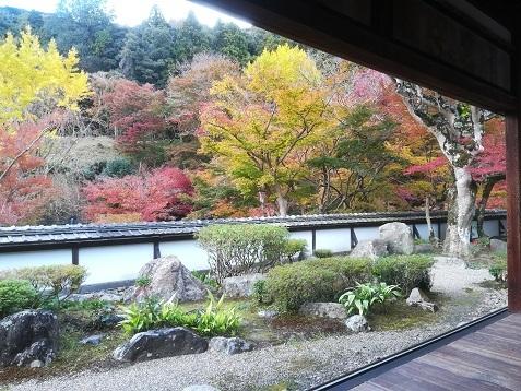 8 正暦寺 福寿院の庭