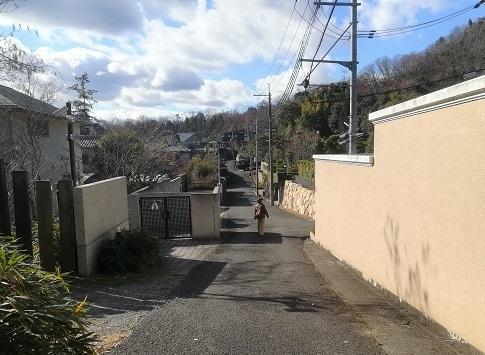 15 豪邸の地区を通過