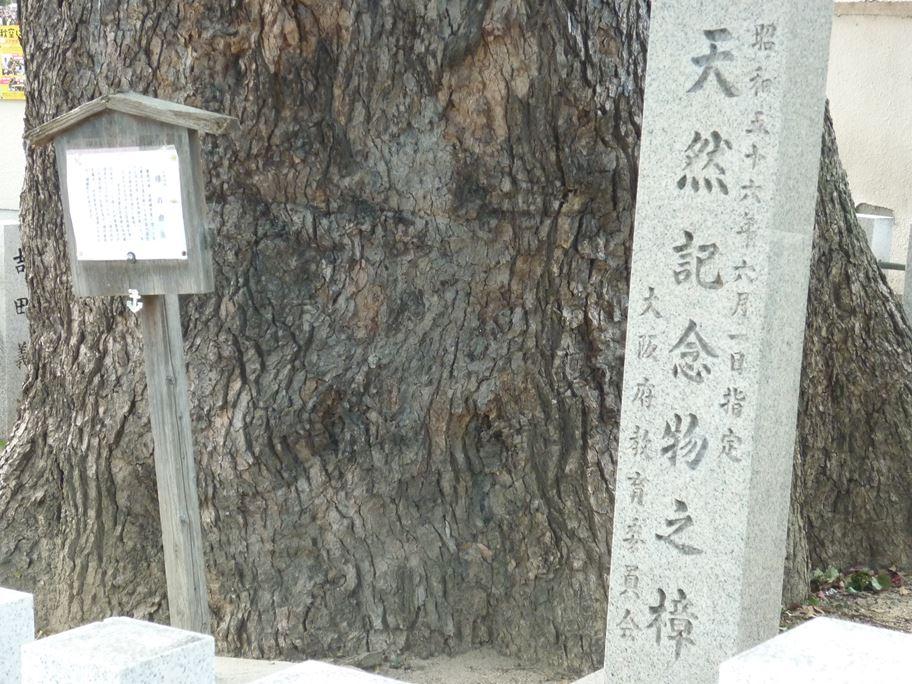 須賀神社跡_04
