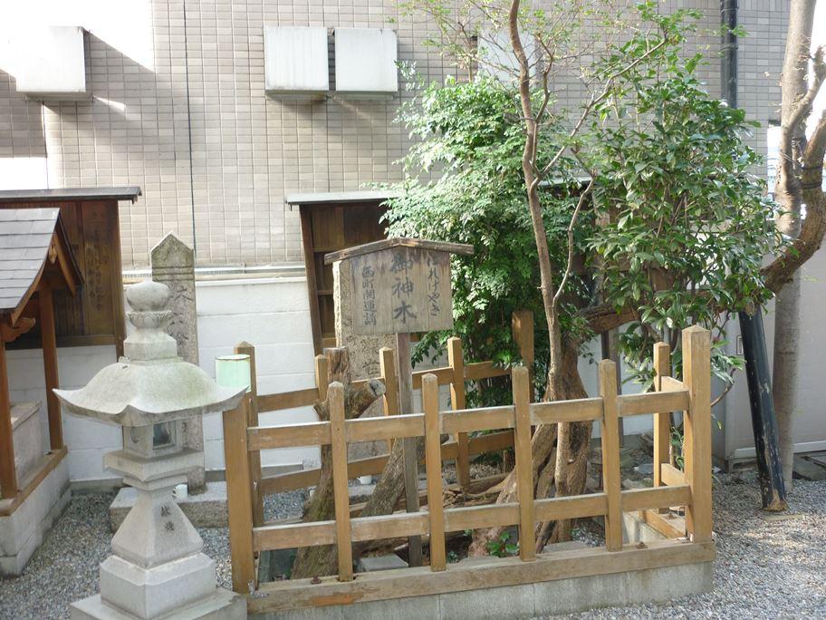 さいの木神社_03
