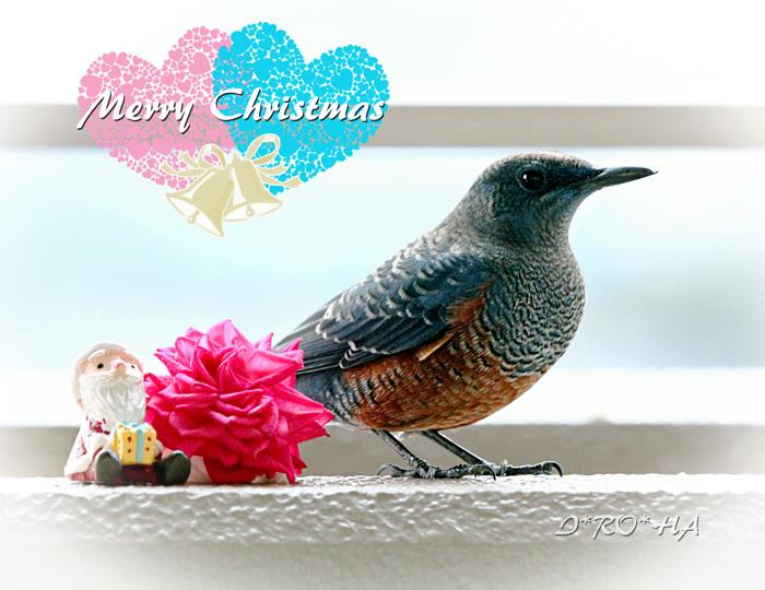 クリスマス_