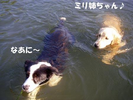 2010-8-27-1.jpg