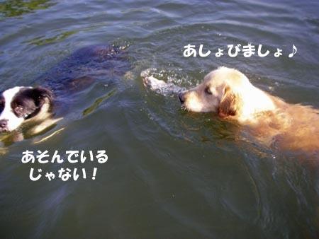2010-8-27-2.jpg