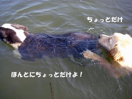 2010-8-27-5.jpg