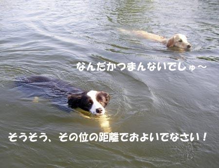 2010-8-27-7.jpg