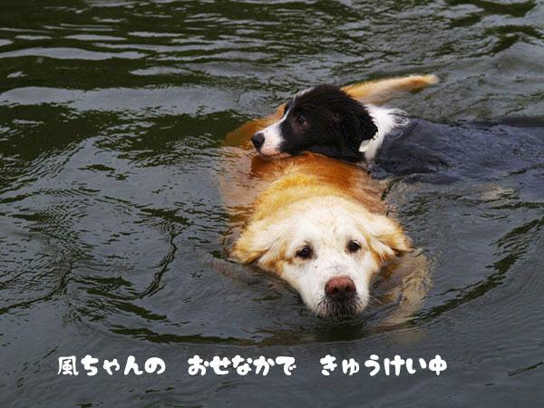 川での初泳ぎ1