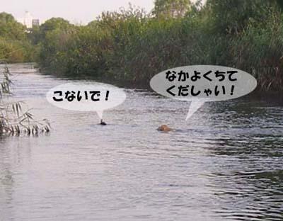 f0114893_1854610.jpg