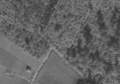04 夫婦塚周辺航空写真(昭和22年)