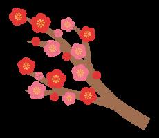 flower_ume_eda_illust_1265.png