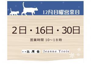 12月日曜営業日_convert_20181130131919