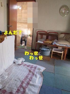 IMG_5440.jpg