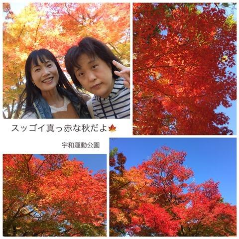 IMG_2256.jpg