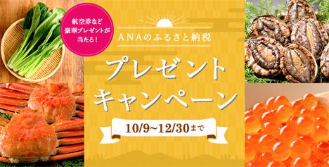 ANAは、国内線往復航空券などがプレゼントされる「ANAのふるさと納税プレゼントキャンペーン」を開催!