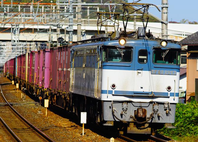 181110 EF653095 shimamoto1