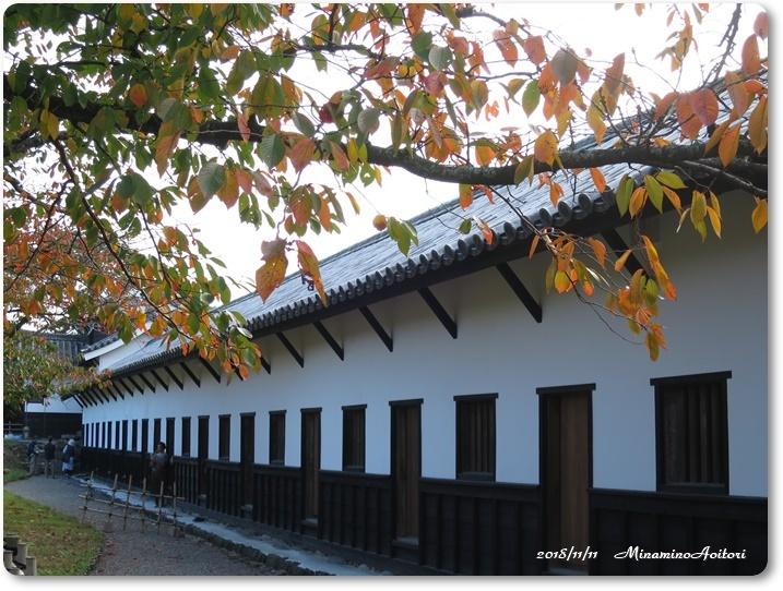 福岡城紅葉 (133)