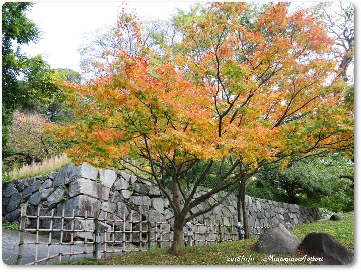 福岡城紅葉 (144)