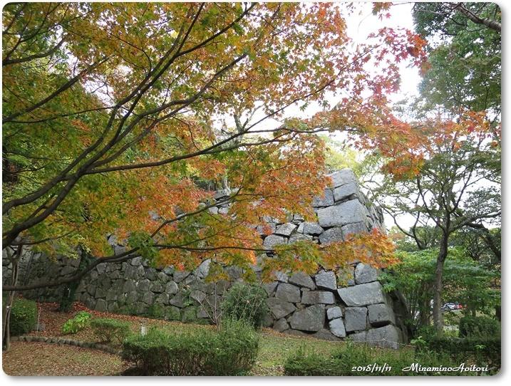 福岡城紅葉 (162)