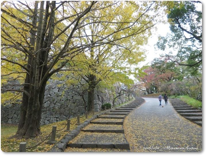 福岡城紅葉 (324)