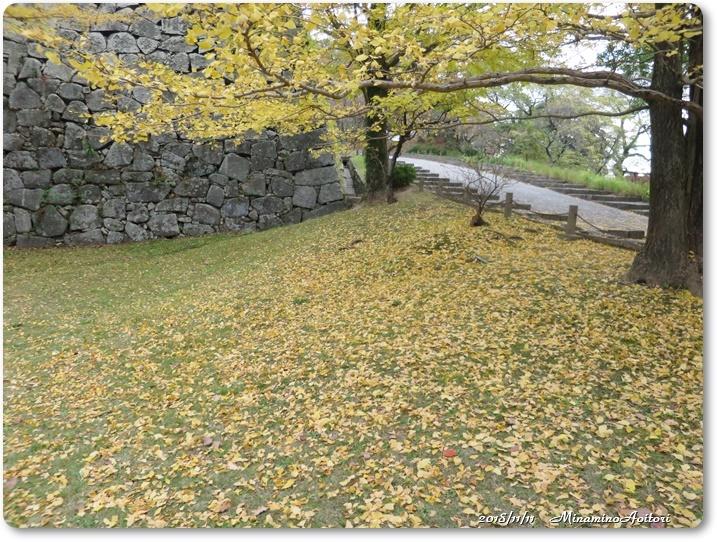 福岡城紅葉 (338)